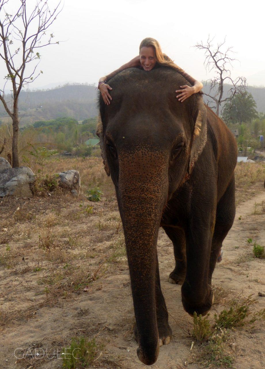 Pai, Tajlandia, wolontariat w Thom's Elephant